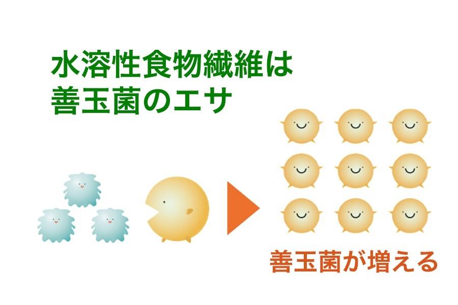 に を 増やす 善玉 は 菌